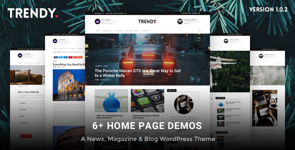 Trendy Pro v1.0.0 - Responsive News Magazine Blog Theme