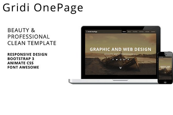 Gridi OnePage v1.0.0 - Beauty & Professional Clean Template