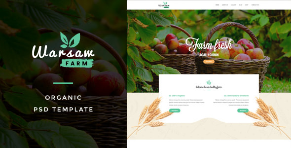 Warsaw - Organic Fruits & Vegetables PSD Template